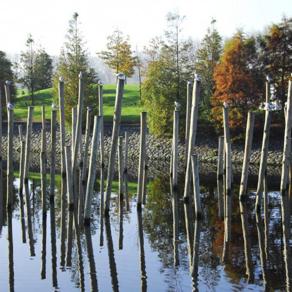 buro-sant-en-co-landschapsarchitectuur-park-schinkeleilanden-amsterdam-stadspark-stadsnatuur-ecologie-houten-palen-waterfront-herfst