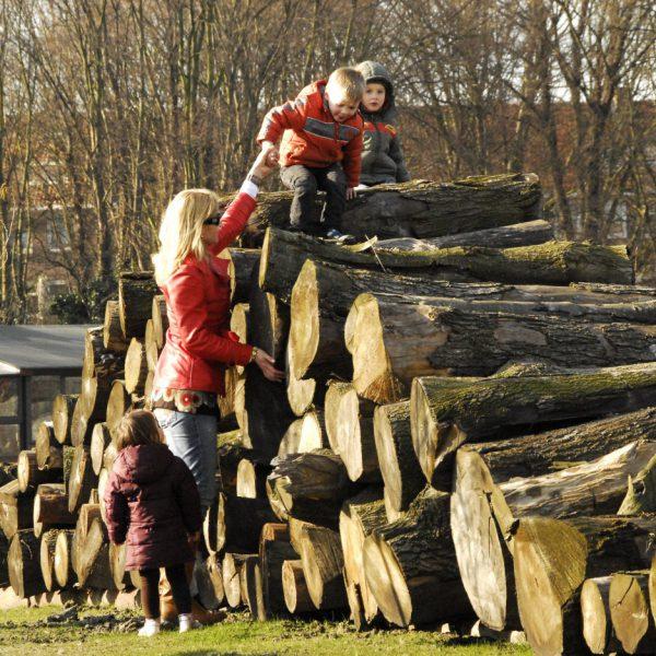 buro-sant-en-co-landschapsarchitectuur-park-schinkeleilanden-amsterdam-stadspark-stadsnatuur-ecologie-houten-stammen-natuurlijke-speeltuin