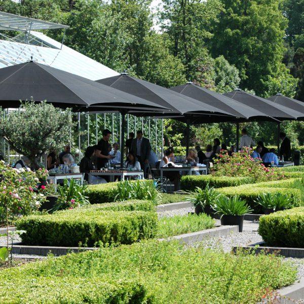 buro-sant-en-co-landschapsarchitectuur-park-frankendael-amsterdam-kastuin-restaurant-de-kas-stadslandbouw-terras