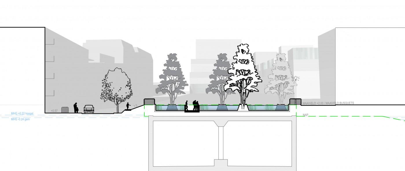 buro-sant-en-co-landschapsarchitectuur-van leeuwenhoekpark-delft-stadspark-dakpark-klimaatadaptief-circulair-watersysteem-ontwerp-doorsnede-3