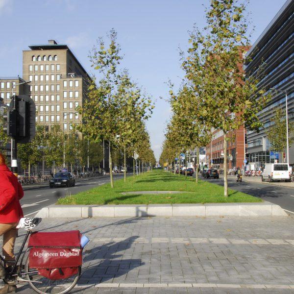 buro-sant-en-co-landschapsarchitectuur-wibautstraat-amsterdam-transformatie-herinrichting-ontwerp-2
