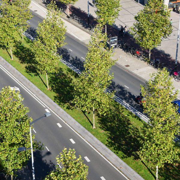 buro-sant-en-co-landschapsarchitectuur-wibautstraat-amsterdam-transformatie-herinrichting-ontwerp-luchtfoto-detail