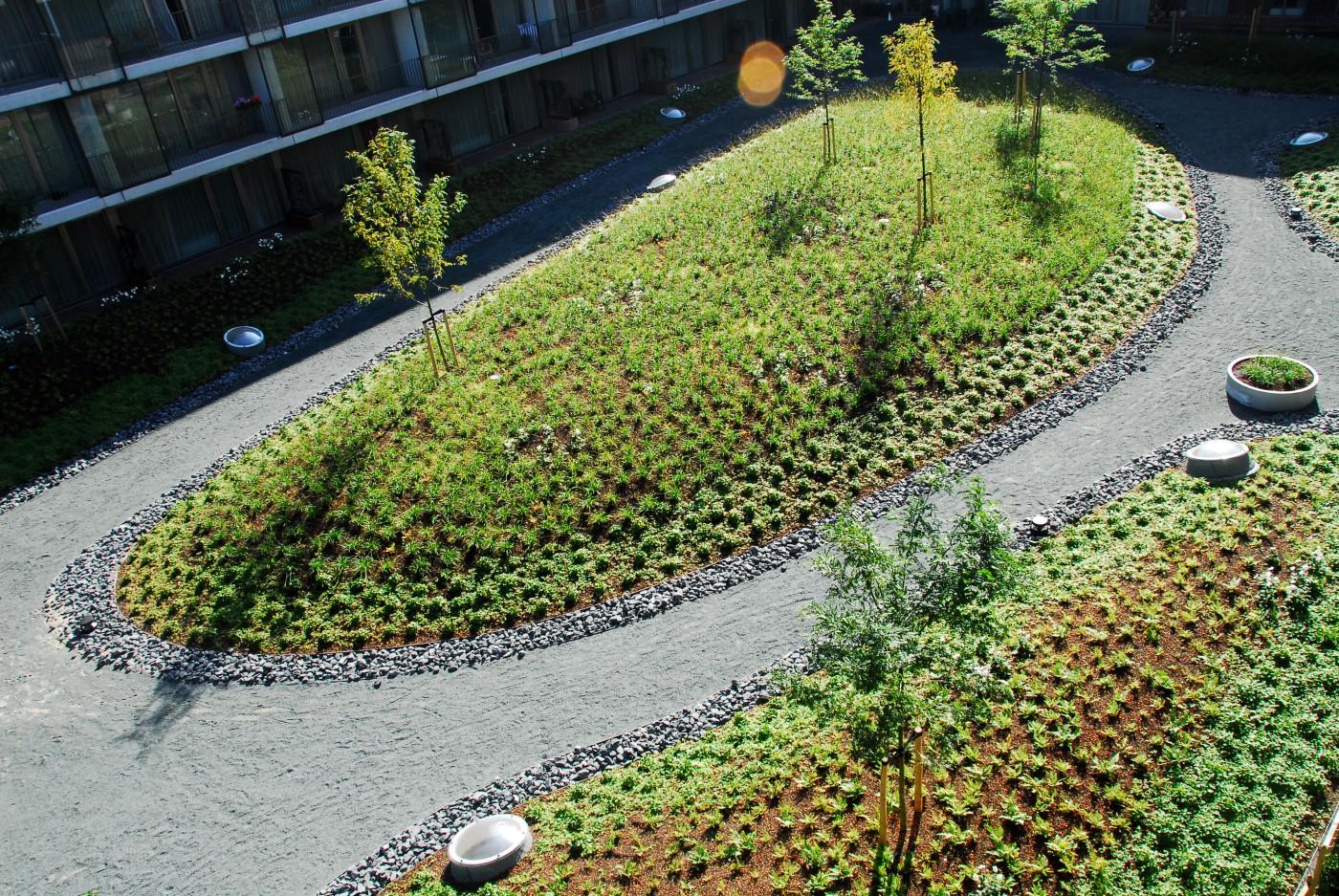 buro-sant-en-co-landschapsarchitectuur-Masira-Amsterdam-Hof-A-grassentuin-daktuin-atollen-rainproof-roofgarden