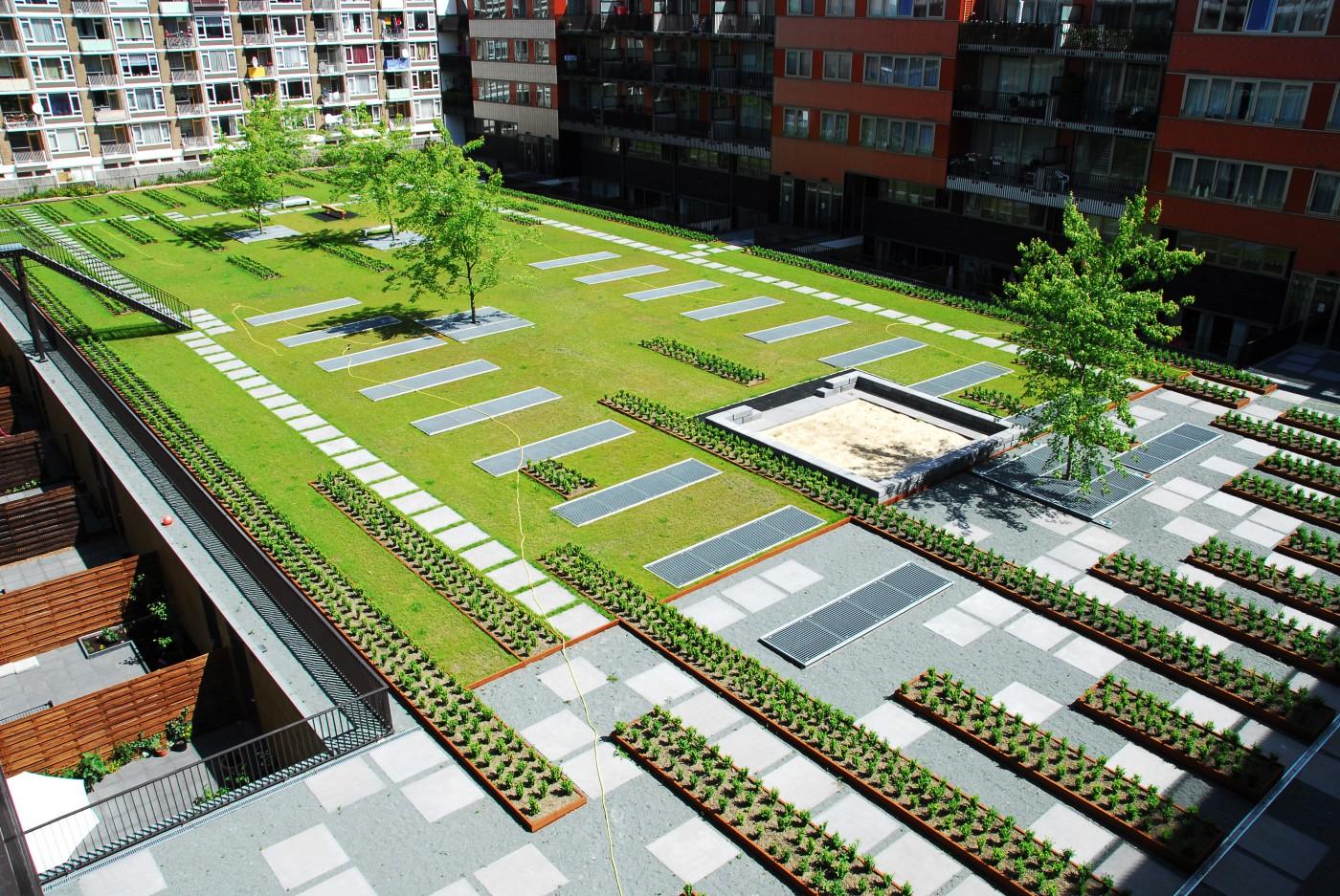 buro-sant-en-co-landschapsarchitectuur-Masira-Amsterdam-Hof-B-binnentuin-daktuin-roodgarden-rainproof-roofgarden