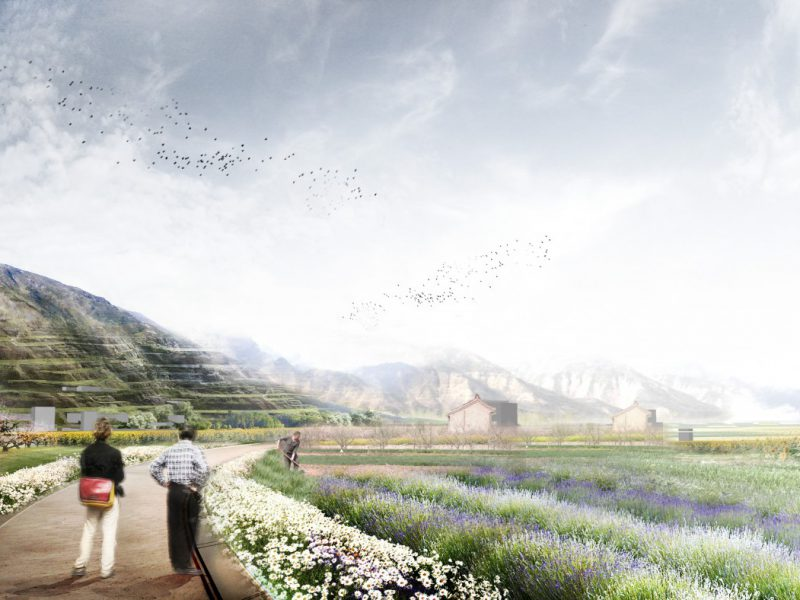 buro-sant-en-co-landschapsarchitectuur-Yuncheng-area2-standpunt4-inside-the-field-andrew2