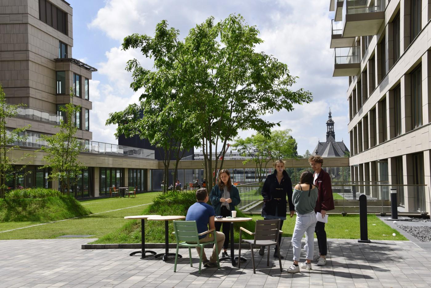 buro-sant-en-co-landschapsarchitectuur-campus-universiteit-leiden-wijnhavenkwartier-den haag-daktuin-1-bw