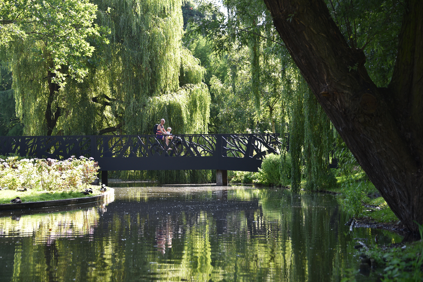 oosterpark-amsterdam-burosantenco-park-renovatie-landschapsarchitectuur-klimaatadaptief-biodiversiteit-stadspark-parkbrug-takkenbrug