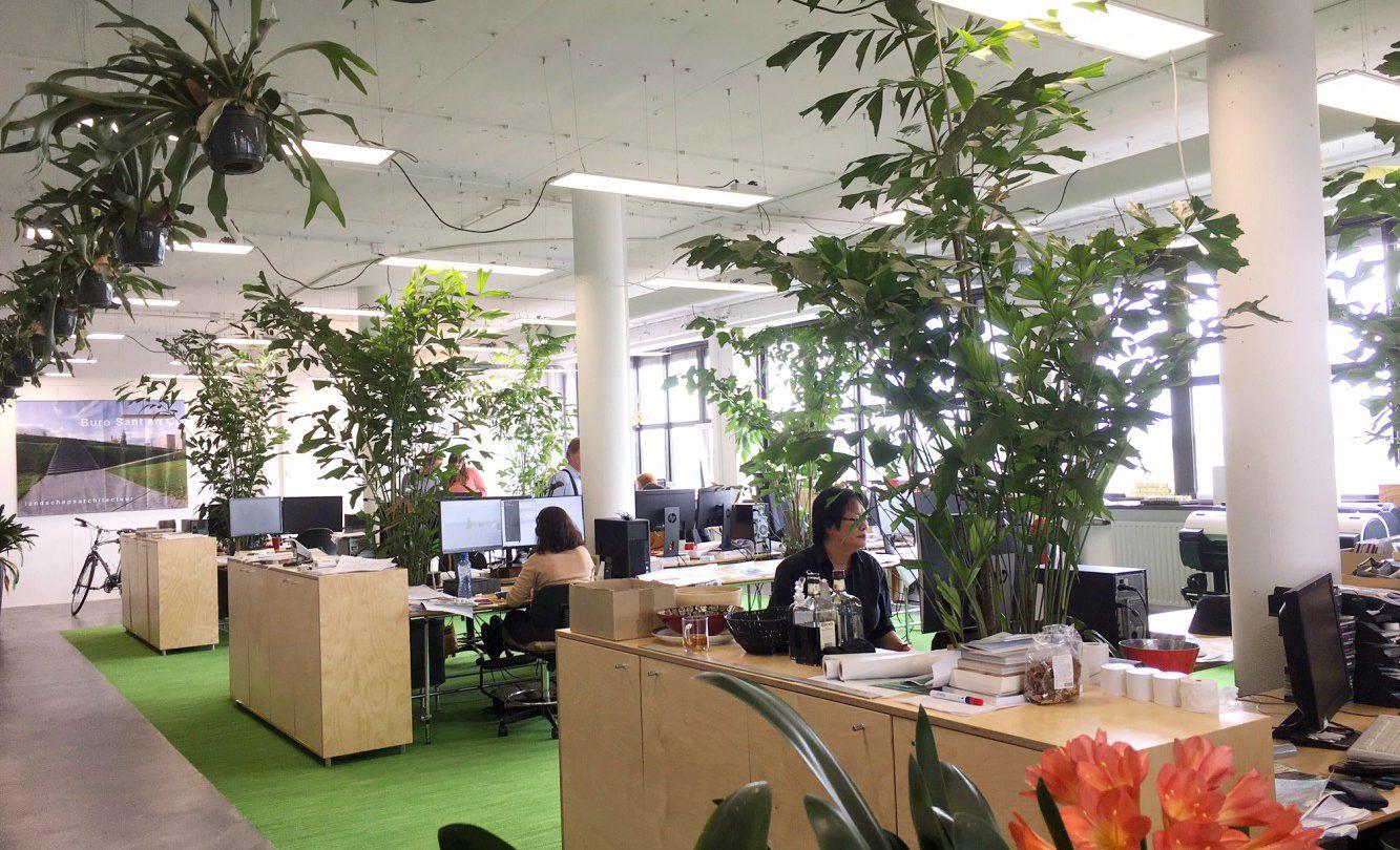 Buro_Sant_en_Co kantoor impressie