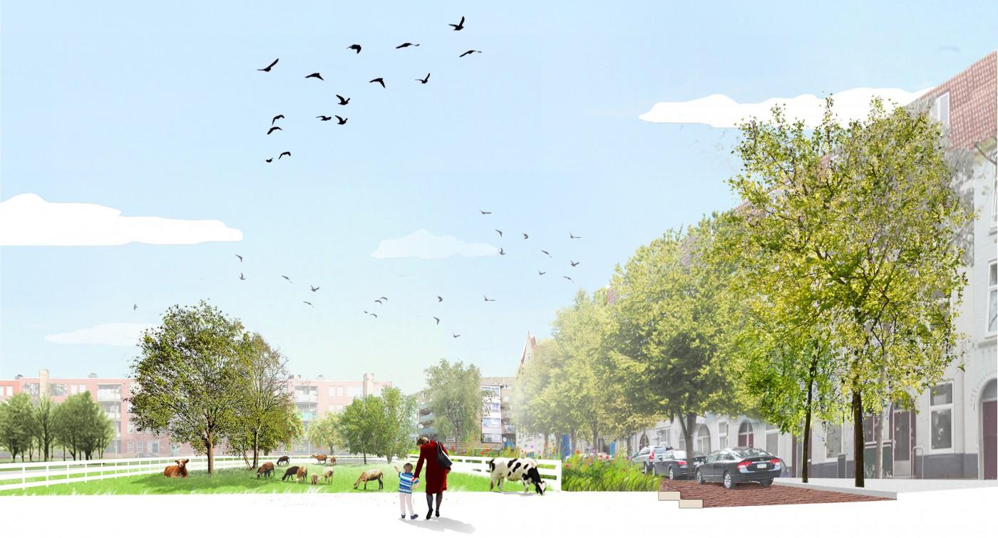 buro-sant-en-co-landschapsarchitectuur-cromvlietpark-den-haag-schetsontwerp-profiel