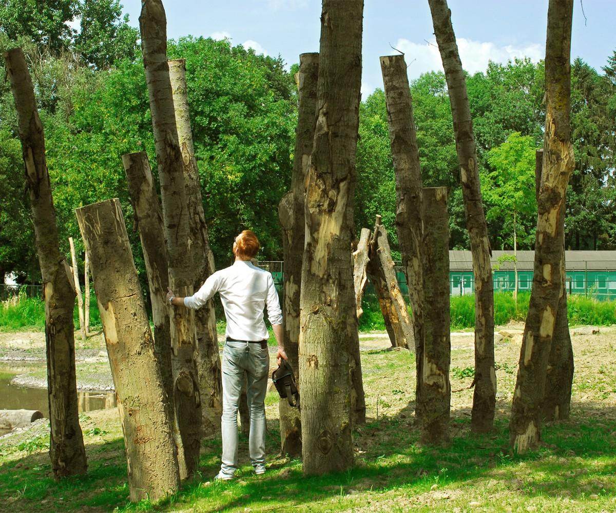 buro-sant-en-co-stadspark-sittard-hergebruik-hout-4