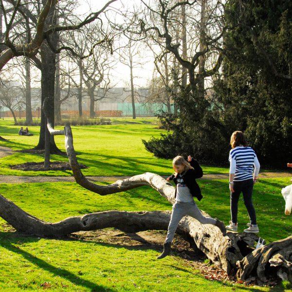 buro-sant-en-co-stadspark-sittard-renovatie