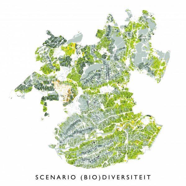buro-sant-en-co-landschapsarchitectuur-groene-hart-bodemdaling-watersysteem-landgebruik-veenweide-scenario-biodiversiteit