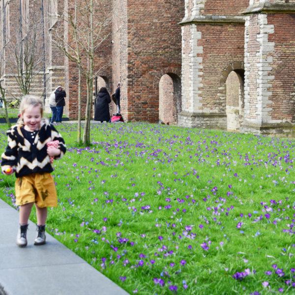 sant-en-co-landschapsarchitectuur-kerktuin-nieuwekerk-delft-foto-web