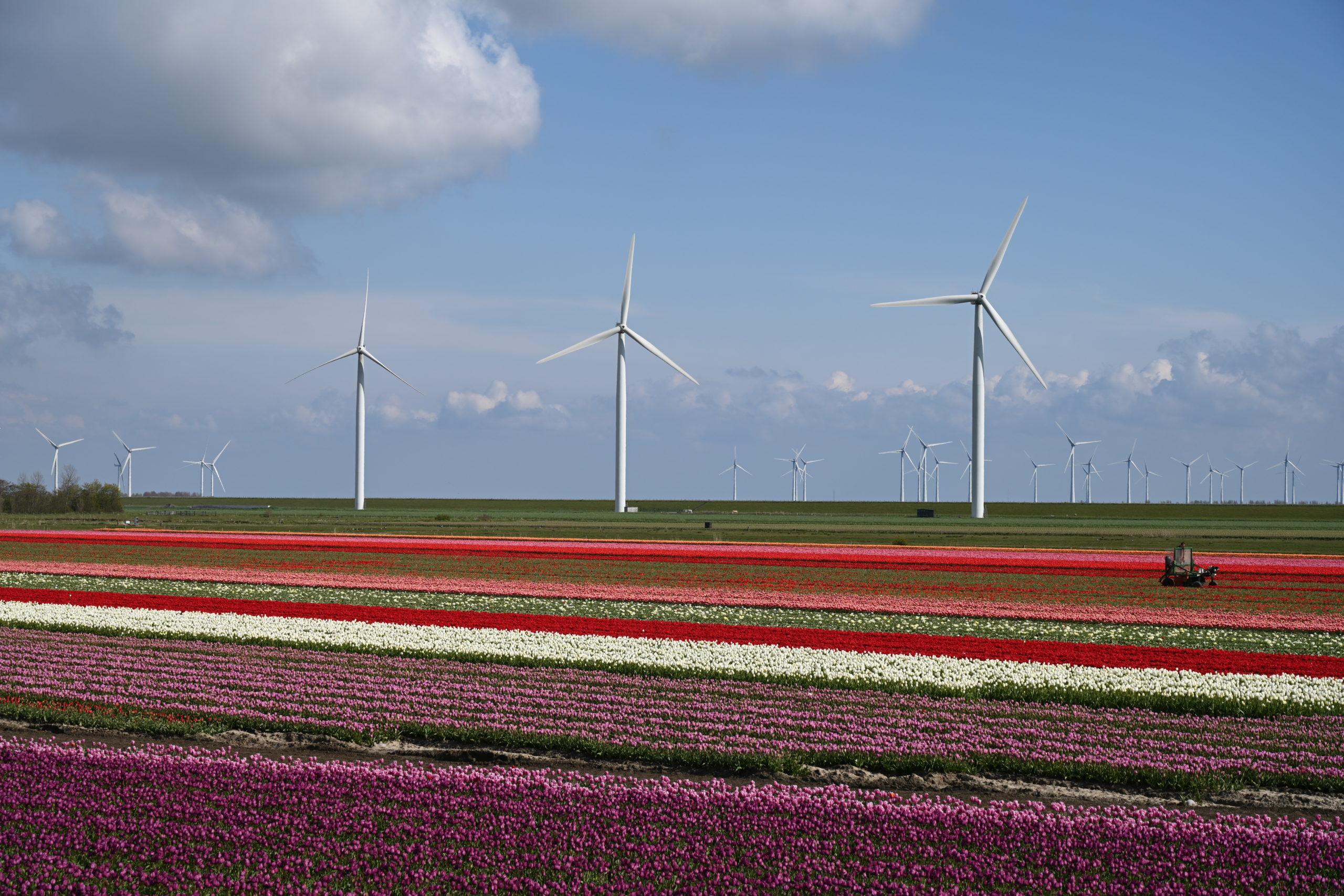 Schone energie-opwekkers in het landschap